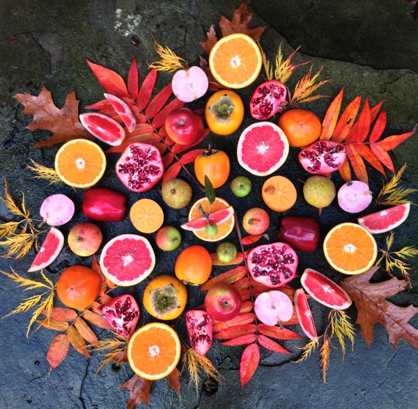 l'art végétarien d'Amber Locke