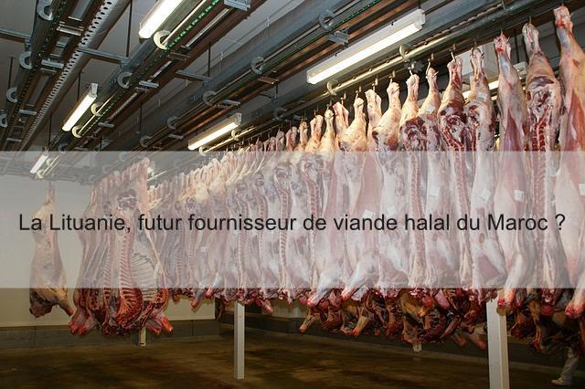 viande abattoir