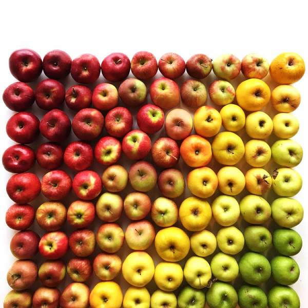 Brittany Wright Food Gradients apples