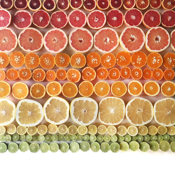 Brittany Wright Food Gradients citrus